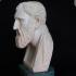Bust of Zeno print image