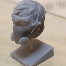Picture of print of Dasher Head