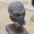 Dasher Head print image
