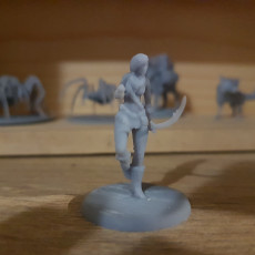 Picture of print of Wood Elf