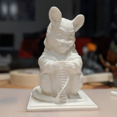 Picture of print of Laboratory Mouse