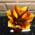 Sharp vase image
