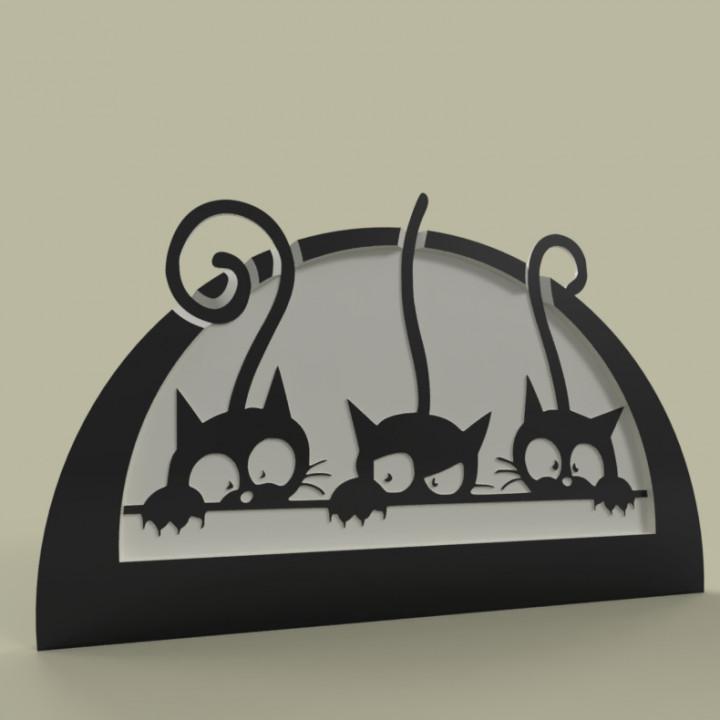 chatons - kitten