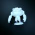 RoboRock print image