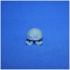 Josesph the Jellyfish image