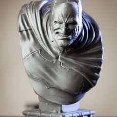 Picture of print of The Dark Knight bust Esta impresión fue cargada por Matt