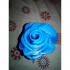 Rose Blue image