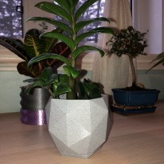 Picture of print of Geometric Pot