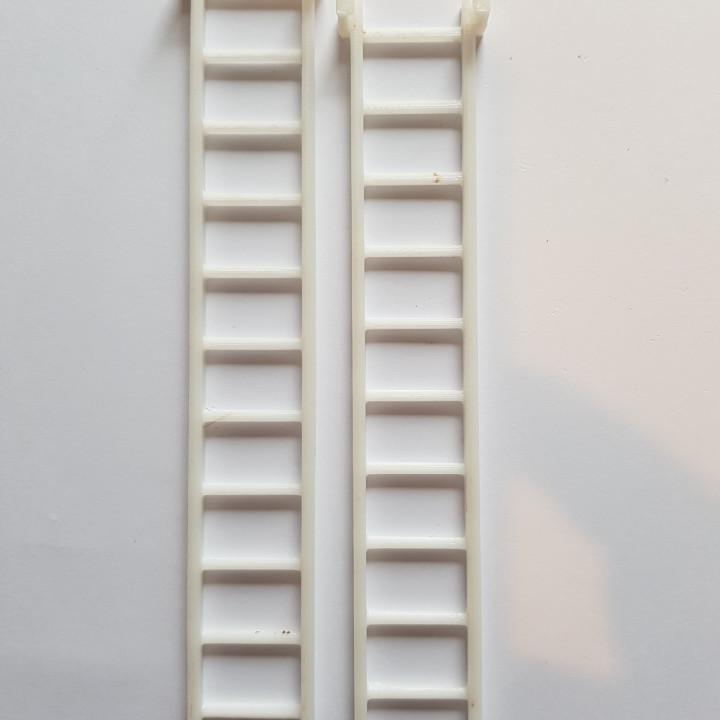 G scale (gauge) extension ladder.