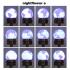 nightflower e image