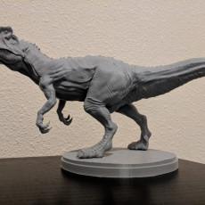 Picture of print of Allosaurus