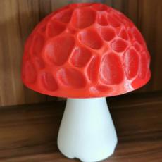 Picture of print of Magic Mushroom (free version)  (LQ)