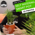 Self Watering Smart Plant Pot image