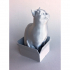 Schrodinky: British Shorthair Cat Sitting In A Box(single extrusion version) image