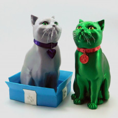 Schrodinky: British Shorthair Cat In A Box - 3D printable multipart model - single material package