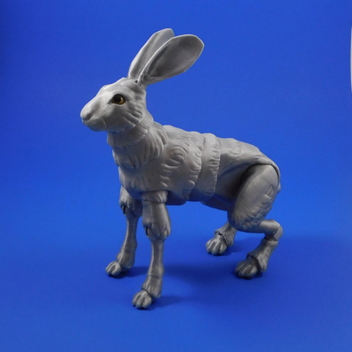 The Fabled Hare (A 3D Printed Ball-jointed Doll)