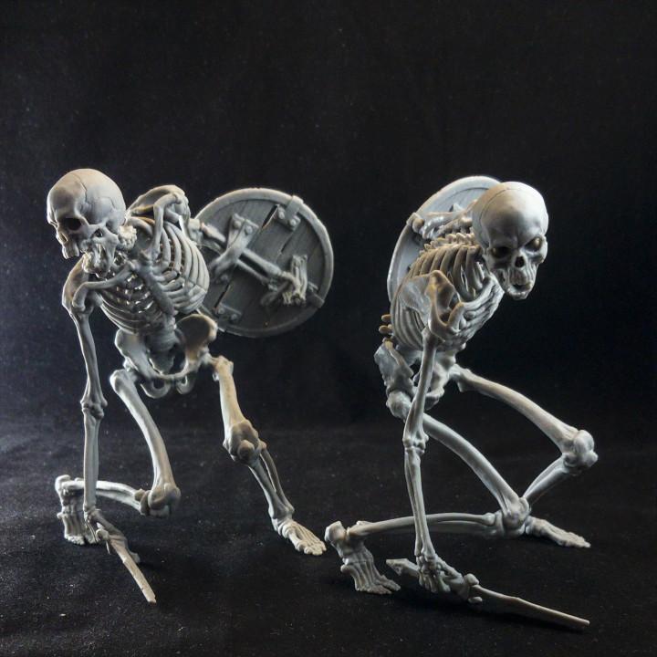 Evil Skeleton Warrior