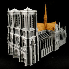 Picture of print of Notre-Dame de Paris Cathedral