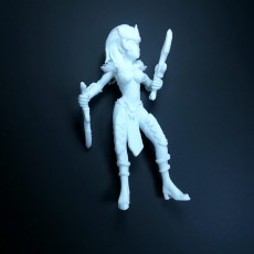Picture of print of Dark elf