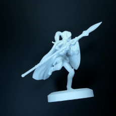 Picture of print of Warrior elf spearmaiden