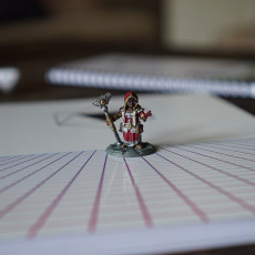 Picture of print of Dwarf woman rune mage
