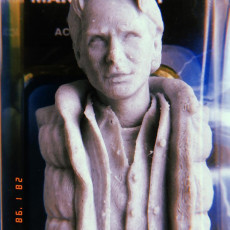 Picture of print of Marty McFly Bust