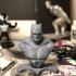 Batman Bust-Dark knight strikes image