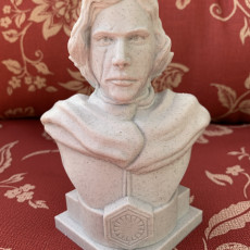Picture of print of Kylo Ren bust