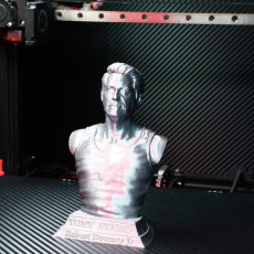 Picture of print of Tony Stark bust