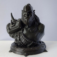 Picture of print of Zefrong the Orc