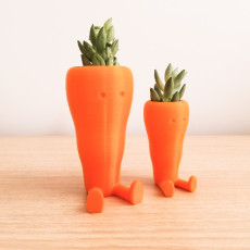 Cute Carrot Shaped Suculent planter