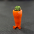 Cute Carrot Shaped Suculent planter print image