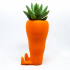 Cute Carrot Shaped Suculent planter image