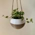 Hanging Planter image