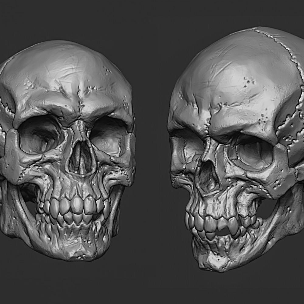 1000x1000 skull1