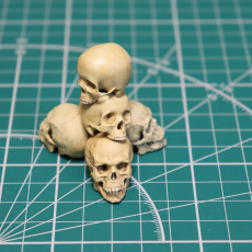 Picture of print of Free Detailed Skull This print has been uploaded by Алексей Коржиков