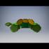 Catherine the turtle image