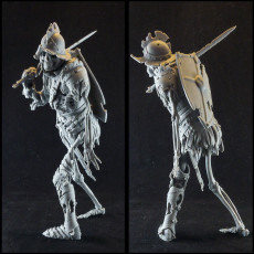 Evil Skeleton Knight