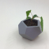 Dodecahedron Planter image