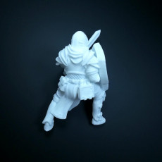 Picture of print of Human paladin with sword and sheld