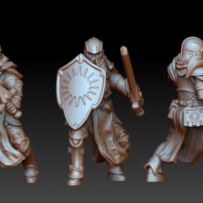 Human paladin with sword and sheld