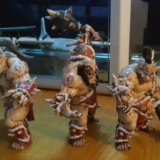 Picture of print of Ogre Marauders - 4 Units