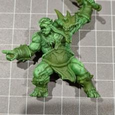 Picture of print of Ogre Marauders - 4 Modular Units