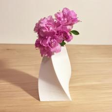 Illusion Vase