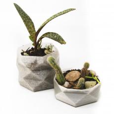 Flower Pot 03 - Maceta 03