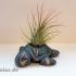 Succulent Planter Turtle image
