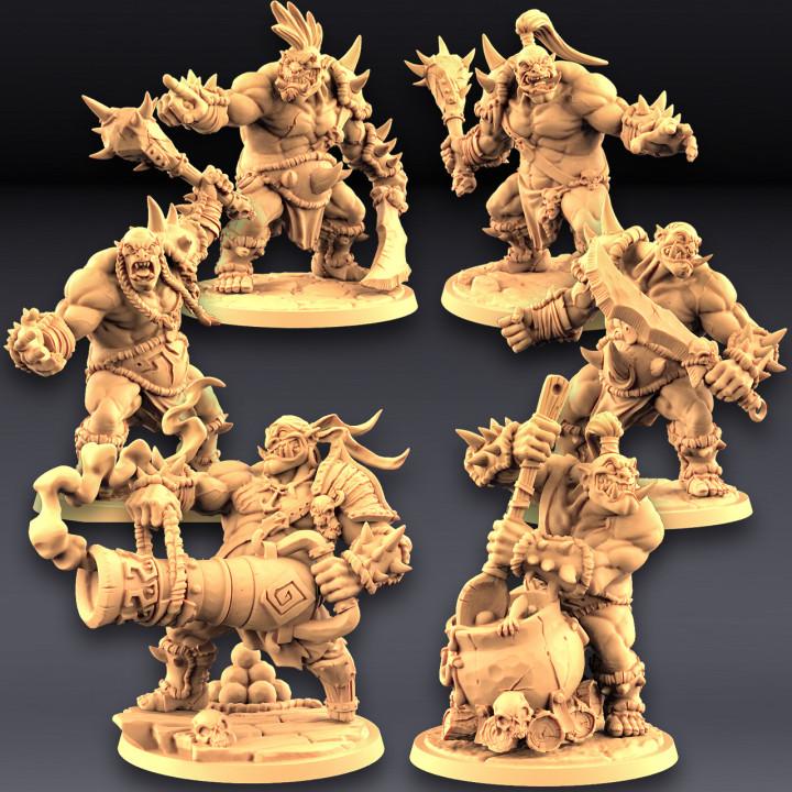 Ogre Marauders Set - 4+2 Heroes Bundle