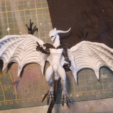 Picture of print of bahamut (FF8)