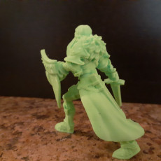 Picture of print of Human Female Paladin This print has been uploaded by Kameron