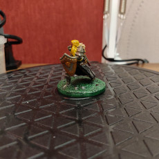 Picture of print of Human Female Paladin
